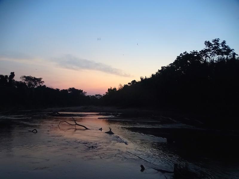 playingtheworld-bolivie-foret-amazonie-selva-rurrenabaque-voyage-26