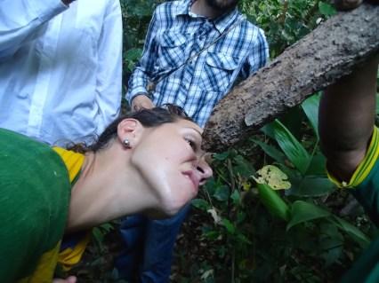 playingtheworld-bolivie-foret-amazonie-selva-rurrenabaque-voyage-46
