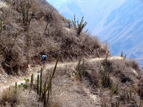 playingtheworld-perou-canyon-colca-voyage-9