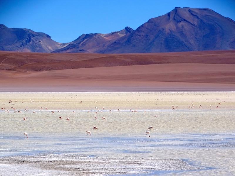 ©playingtheworld-bolivie-salar-uyuni-voyage-68