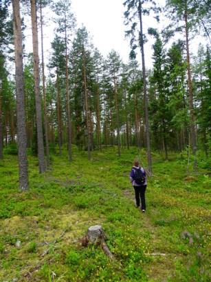 ©playingtheworld-finlande-lacs-mokki-voyage-21
