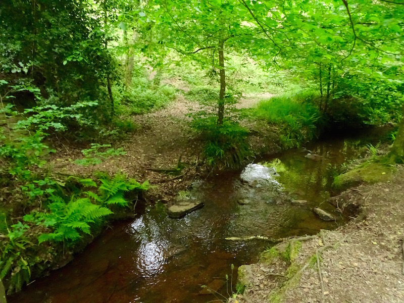 ©playingtheworld-week-end-bretagne-broceliande-val-sans-retour-5
