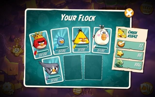 Check your bird cards