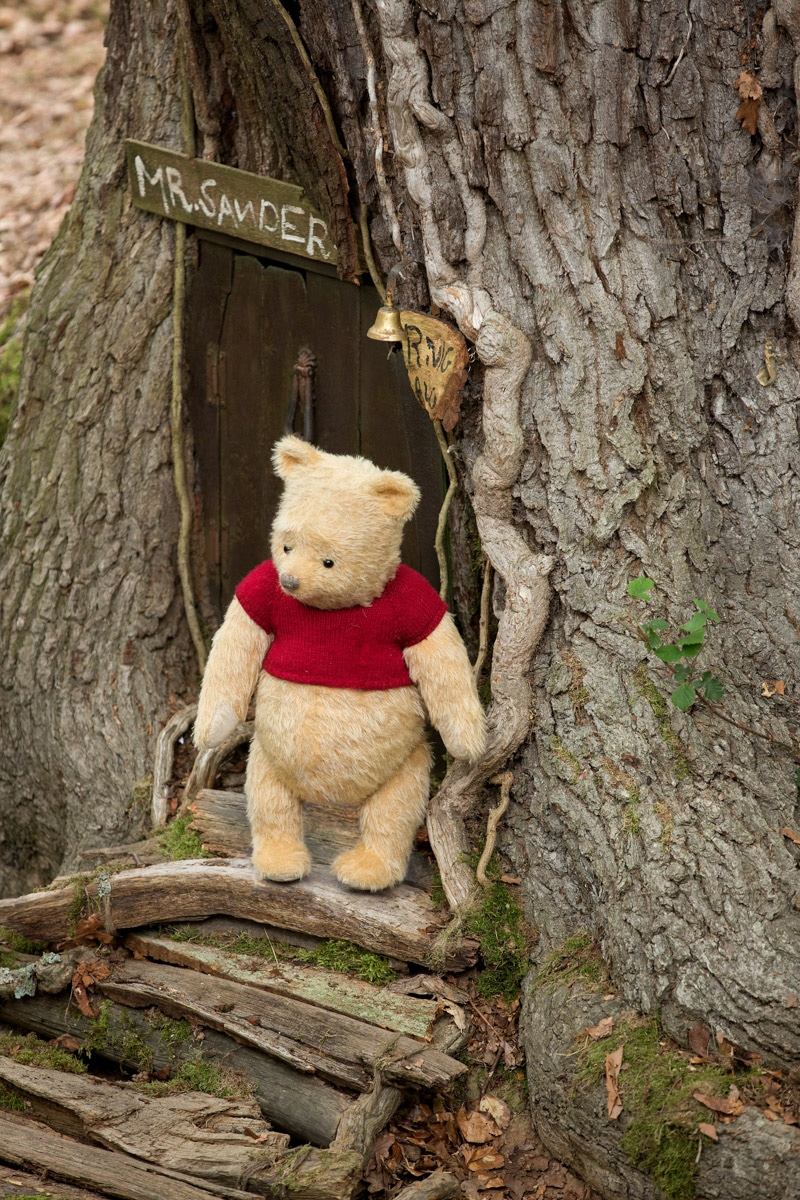 Winnie the pooh wandering out of his tree