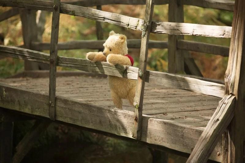 Winnie the pooh on a bridge