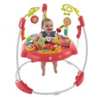 Where To Buy Fisher Price Pink Petals Jumperoo UK