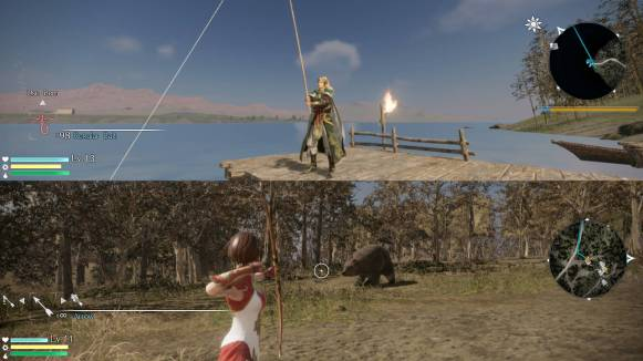 dynastywarriors9_coopimages_0005