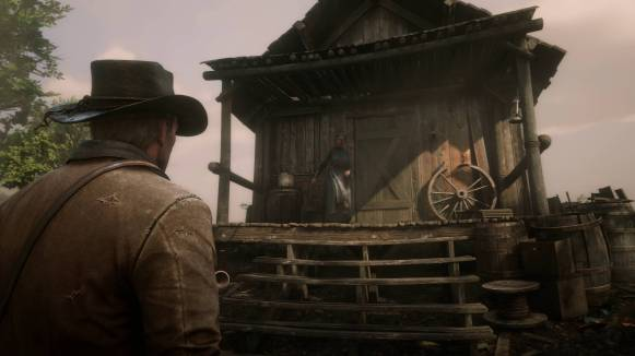 reddeadredemption2_octimages_0070