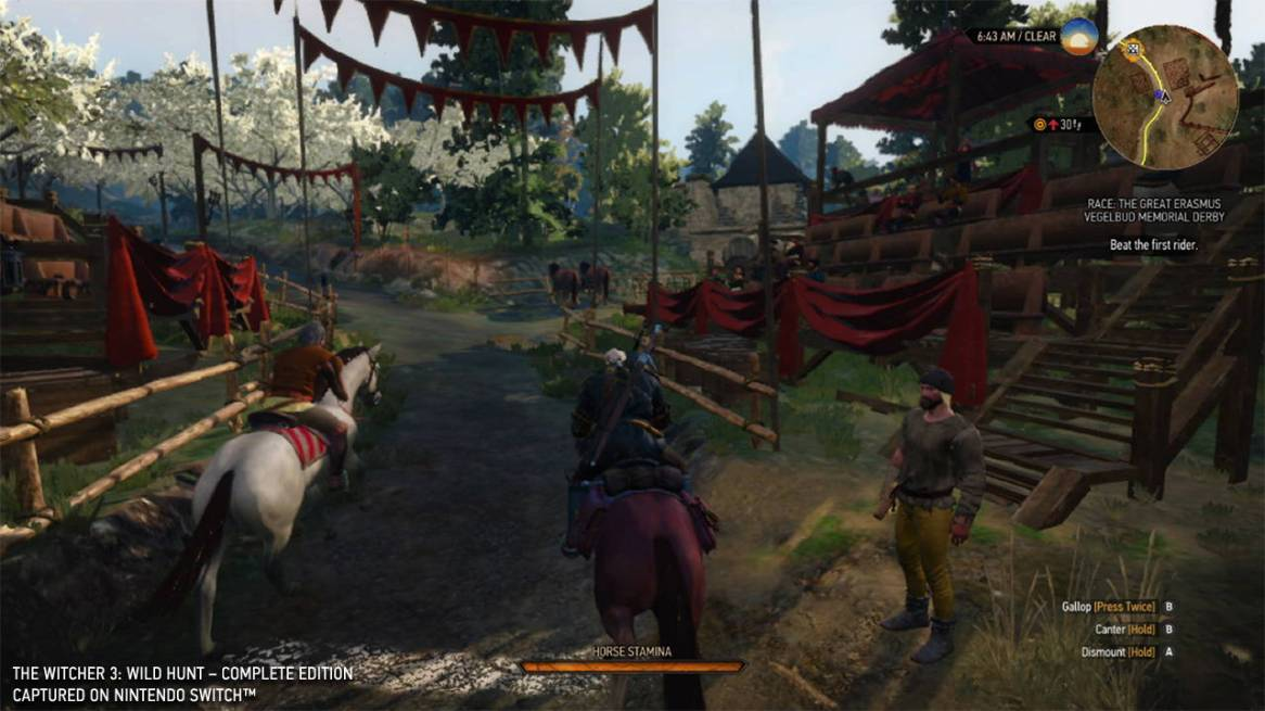 thewitcher3wildhunt_gc19switchimages_0003