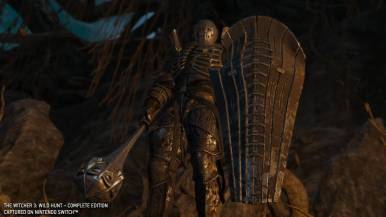 thewitcher3wildhunt_gc19switchimages_0022