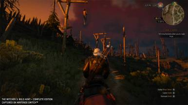 thewitcher3wildhunt_gc19switchimages_0024