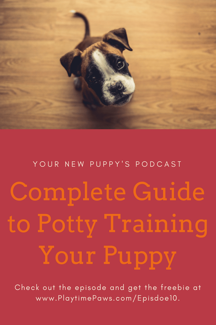 YNP 010 Complete Guide to Potty Training Your Puppy