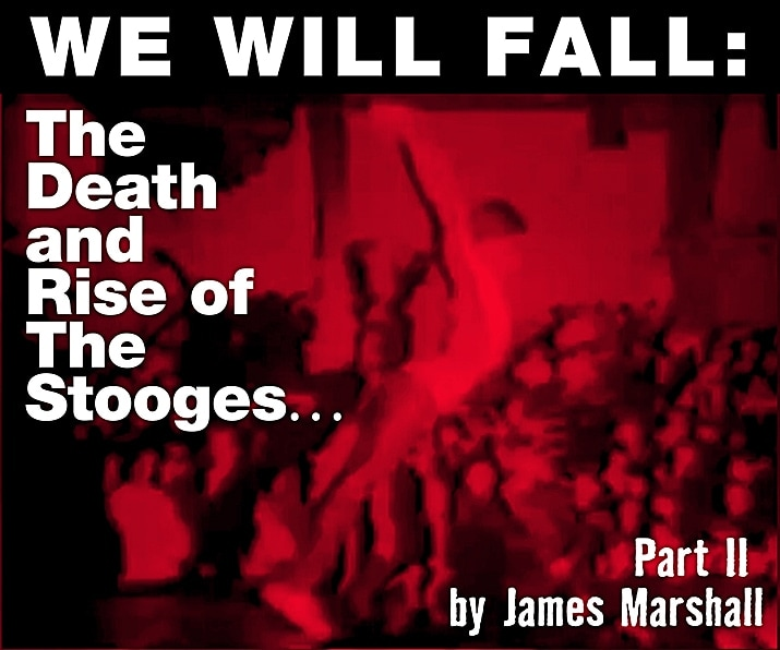 We Will Fall: The Death and Rise of The Stooges… by James Marshall