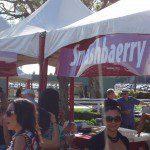 Santa Anita California Wine Festival (12)