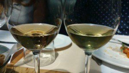 Vigne del Malina Pinot Grigio 2011 and Sauvignon Blanc 2011