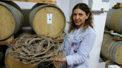 Kouloura vine