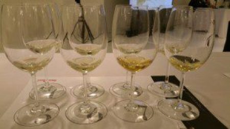 Custoza White and Gold