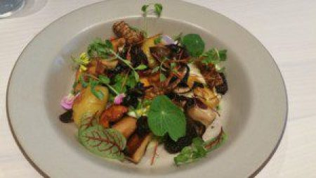 The Forest, quinoa risotto, mushrooms, parsley moss (Mauro Colagreco, Mirazur, Menton, France 2011)