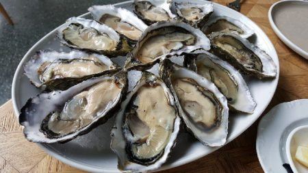 1-oysters