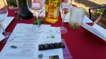 chocolate-sensory-experience-at-paradise-ridge-winery-kenwood-tasting-room