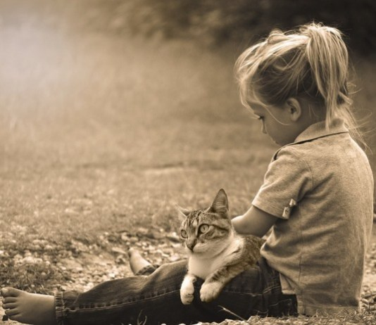 Menina brinca com gato