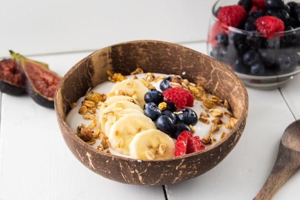 homemade vegan coconut yogurt probiotic