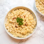 vegan gluten free mac and cheese
