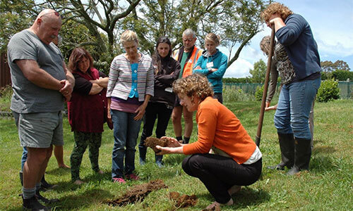 observing-soil