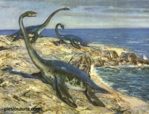 The plesiosaur Hydrorion moving on land