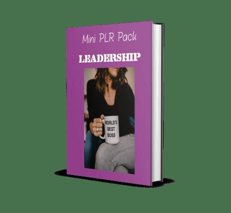 Leadership Mini PLR pack 1