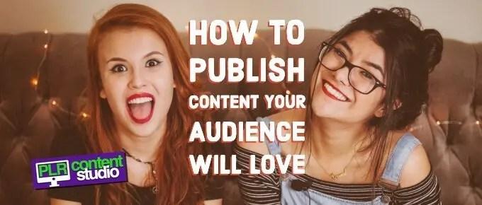 PLR Content Marketing Audience