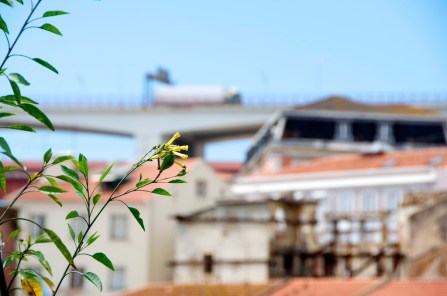 Lisboa_024