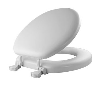 Comfortable Padded Toilet Seats and Back Rest Grab Bars