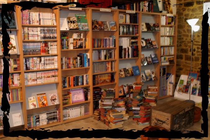 La librairie - A l'étage : l'occaz'
