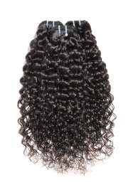 raw burmese curly collection posh
