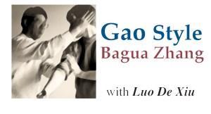 Luo De Xiu Goa Style Bagua @plumpub.com