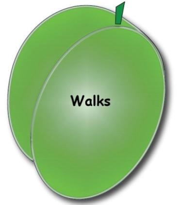 Walks 6