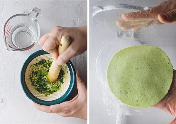 tortillas-coriandre