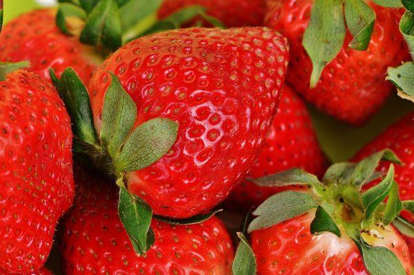 fraisesfraîches