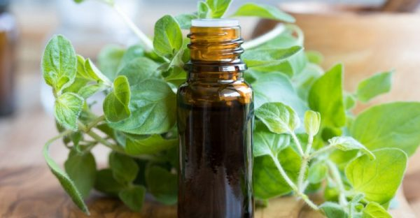 11 Bienfaits de l'huile essentielle d'origan pour votre santé ⋆