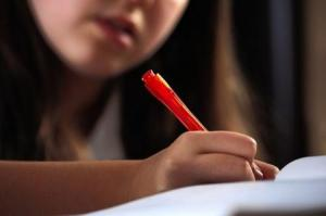 Entrance Examinations Plus Learning Tuition Rossendale