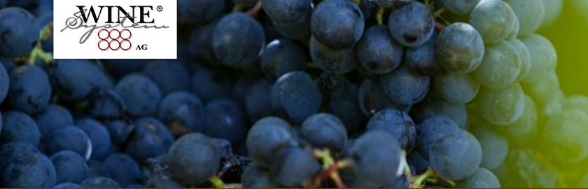 Credit: Wine System AG