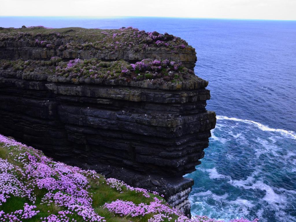 Frühling in Irland I Bild: Plusperfekt.de