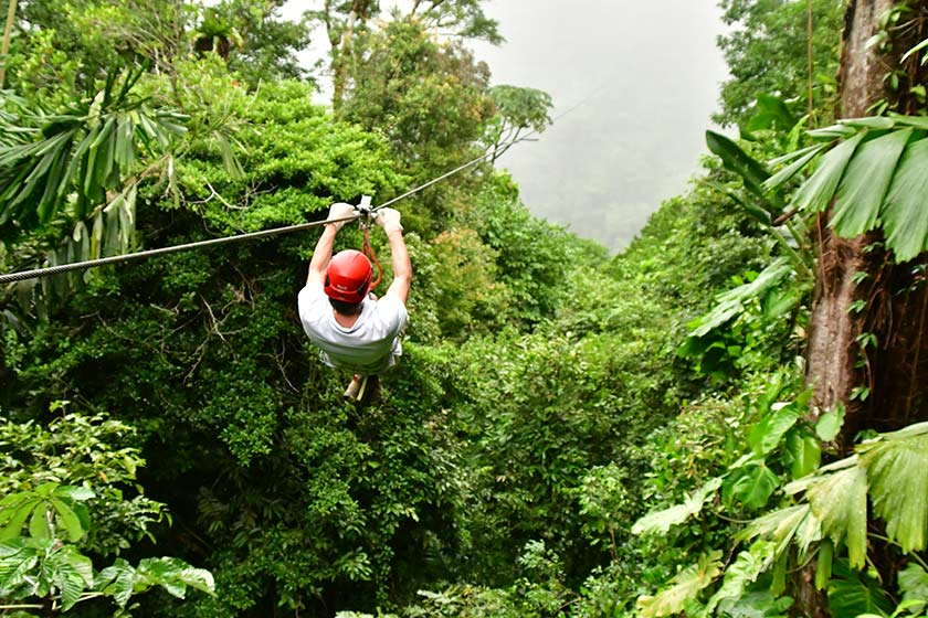 Zip Lining durch den Wald