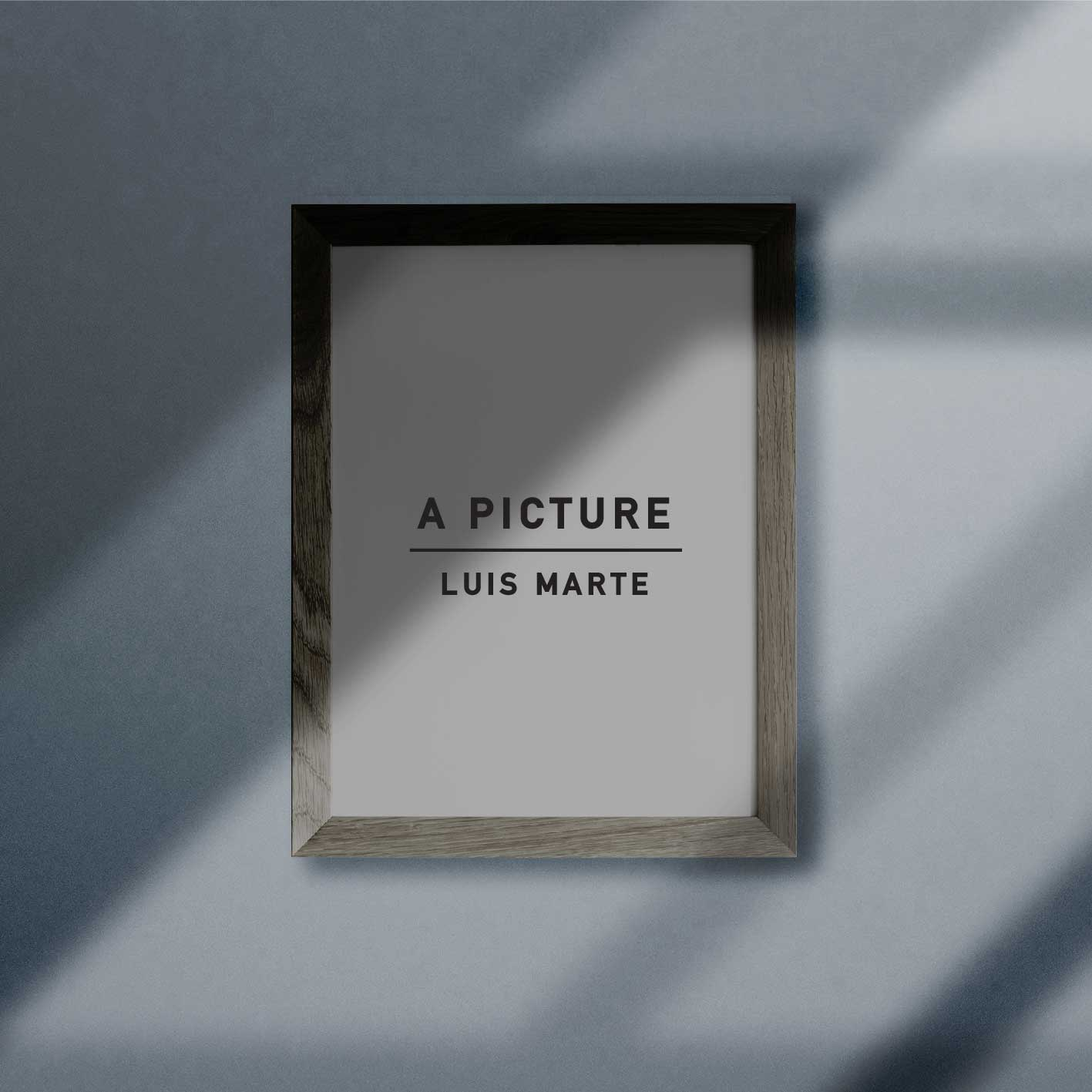 LUIS MARTE – A PICTURE