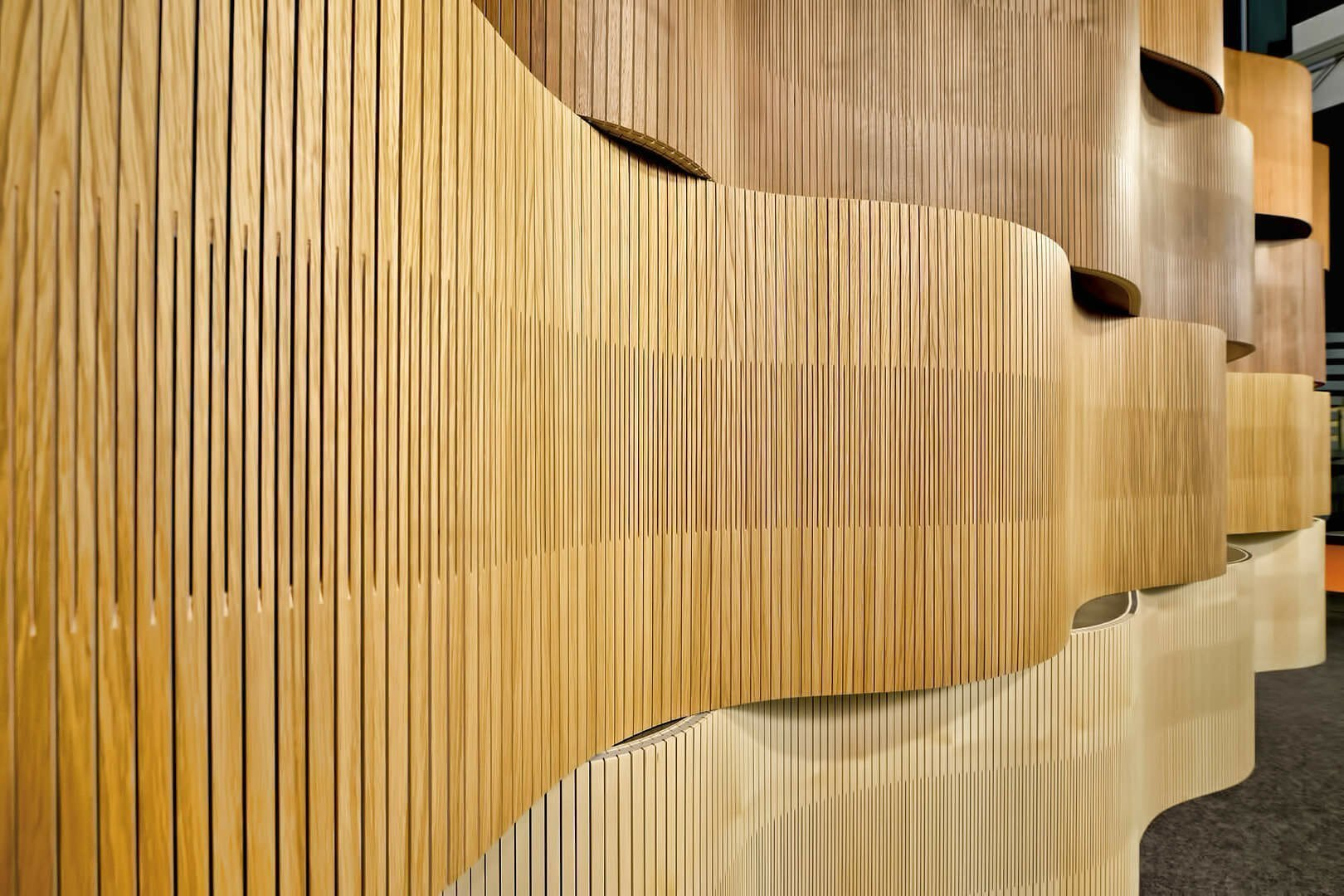 Showroom Design  Curve Wall  PLY PROJECT