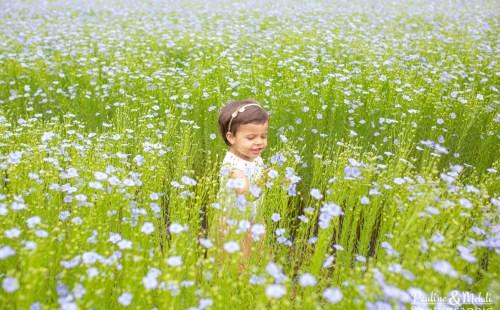 PAULINE-MEHDI-PHOTOGRAPHIE-PHOTOGRAPHE-ENFANT-FILLE-MODE-KIABI-ROBE-NATURE-CHAMP-BLEU-LIN-FLEURS-CAEN-CALVADOS-NORMANDIE-SHOOTING