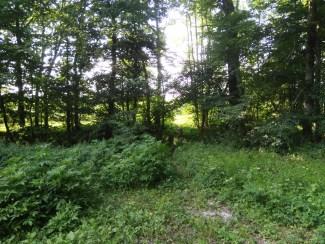 Grenzübergang des ehemaligen Grimmelshoferweges