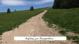 Aufstieg zum Herzogenhorn