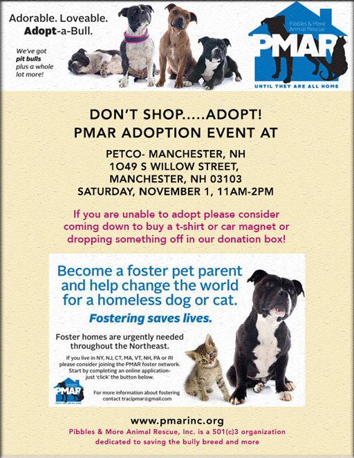 Petco Adoption Event Manchester Nh Pibbles More Animal Rescue
